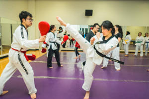 how much does it cost to open a martial arts school