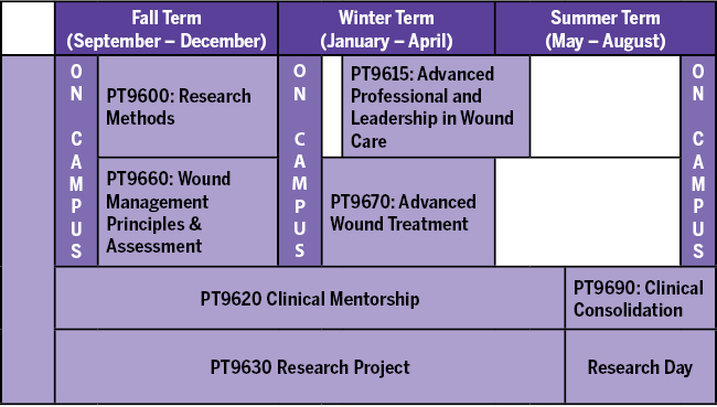 Wound Healing - School of Physical Therapy - Western University