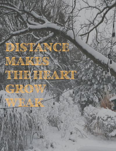 Cover image of catalogue: Distance makes the heart grow weak, 2021